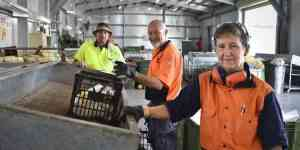 Bundaberg area pockets $7 million through Containers for Change